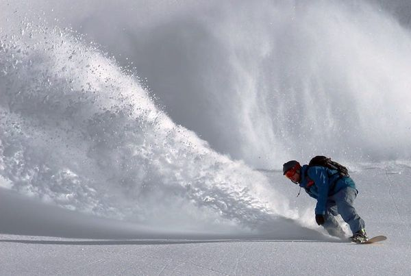 Software for Fresh Powder